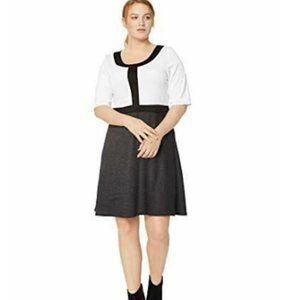 Star Vixen Women's Plus-Size Shortslv Stretch Fit